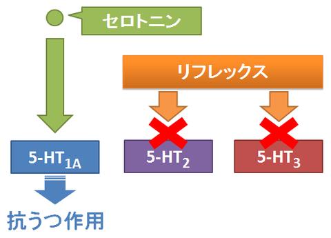 リフレックス3~セロトニン受容体