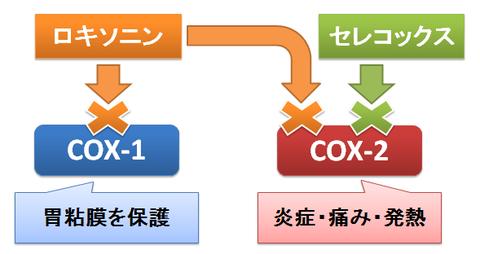 ロキソニンとセレコックス~COX