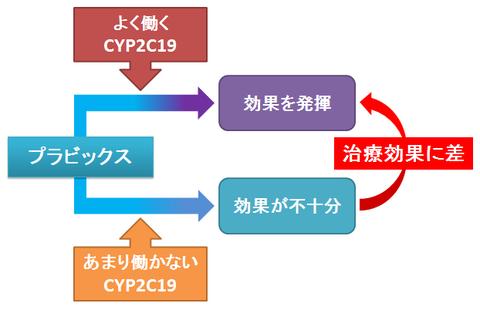 プラビックス~CYP2C19による個人差