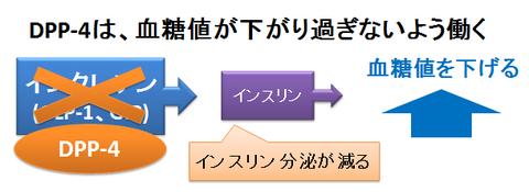 DPP-4の作用
