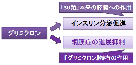グリミクロン~SU類としての作用と、血管への作用