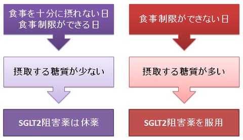 SGLT2阻害薬と食事制限