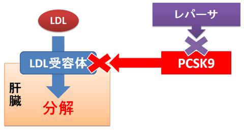 レパーサ~PCSK9阻害