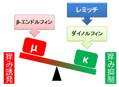 中枢性の痒み~κとμ受容体のバランス