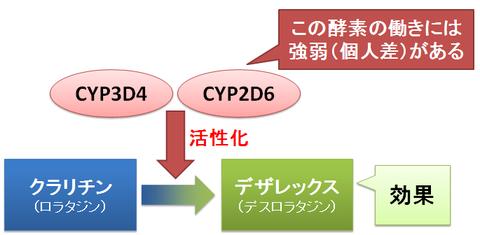 デザレックスとクラリチン~CYPによる活性化