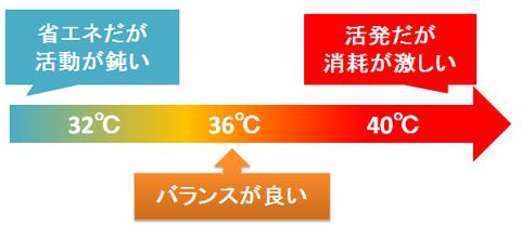 ヒトの体温が36℃な理由