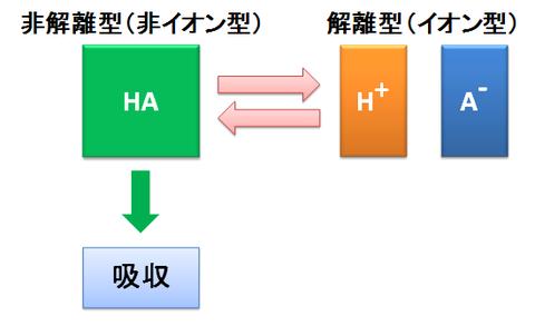解離型と非解離型
