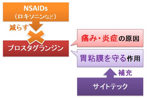 サイトテック~プロスタグランジンの補充と作用