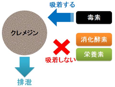 クレメジンの作用~毒素と消化酵素や栄養素