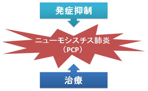 ST合剤とPCP治療、発症抑制