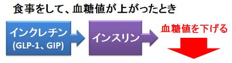 DPP-4の作用~インクレチン