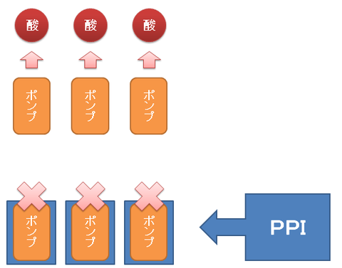 プロトンポンプの再生1