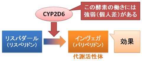 インヴェガ~CYP2D6