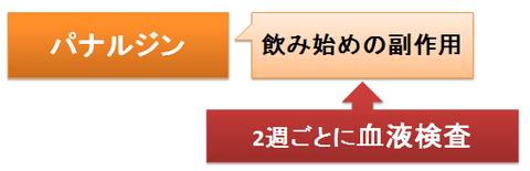 パナルジン~血液検査