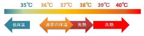 ヒトの深部体温