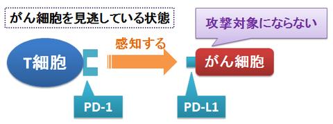 オプジーボ1~PD-1抗体としての作用機序